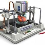 Inimă creată în laborator în următorii 10 ani