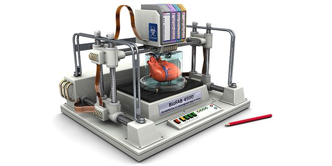 bioprinted-3D-heart