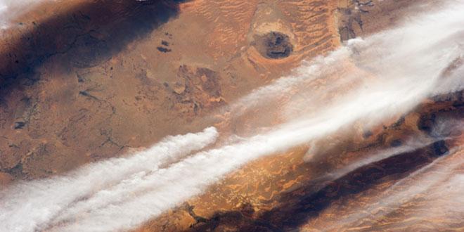 nori în Sahara/Mauritania