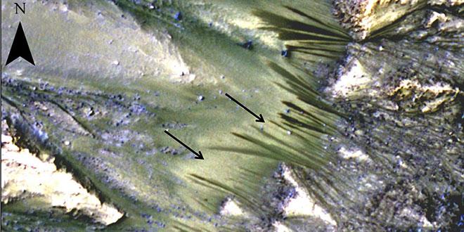 RSL Marte