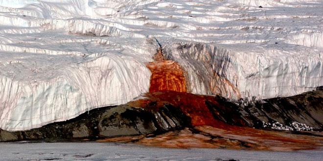 Cascada de sânge