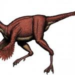 Anzu wyliei – un dinozaur cu pene neobișnuit