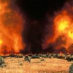 Schimbările climatice – efectele încălzirii globale se vor agrava