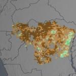 Selva din Congo în declin, pădurea tropicală afectată de secetă