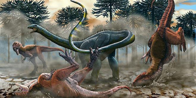 diplodoc diplodocus
