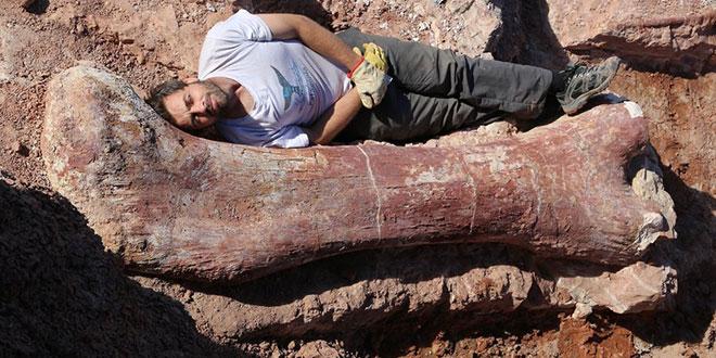 Cel mai mare dinozaur din lume