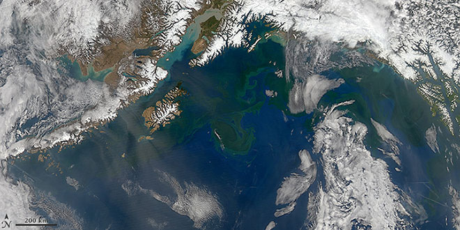 Alaska Gulf