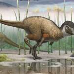Kulindadromeus zabaikalicus – primul dinozaur erbivor cu pene