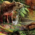 Silvacola acares – un mic arici de acum 52 milioane de ani