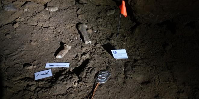 fosile Izbuc