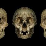 Homo floresiensis nu ar fi o altă specie de hominin
