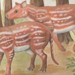 Cambaytherium thewissi – strămoșii cailor ar fi apărut în India