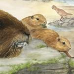 Vintana sertichi – un mamifer contemporan dinozaurilor
