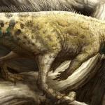 Aquilops americanus – dinozaur cu coarne cât o pisică