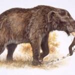 Mastodontul american a fost decimat de schimbările climatice
