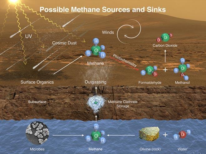 metanogeneza