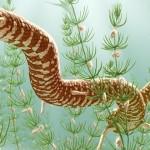 Eophis underwoodi și evoluția șerpilor din vremea dinozaurilor