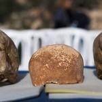 Manot 1 – omul care a trăit alături de neanderthalieni
