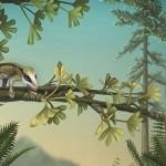 Agilodocodon și Docofossor, mamifere primitive din vremea dinozaurilor