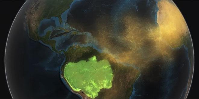 selva amazoniana
