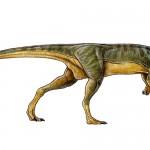 Chilesaurus diegosuarezi – un dinozaur theropod erbivor