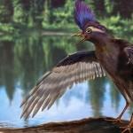 Archaeornithura meemannae – o pasăre de acum 130 milioane de ani