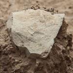 Cele mai vechi unelte din piatră preced apariția omului