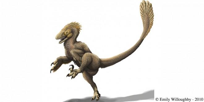 dinozaur Balaur bondoc