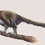 Balaur bondoc – dinozaur sau pasăre?