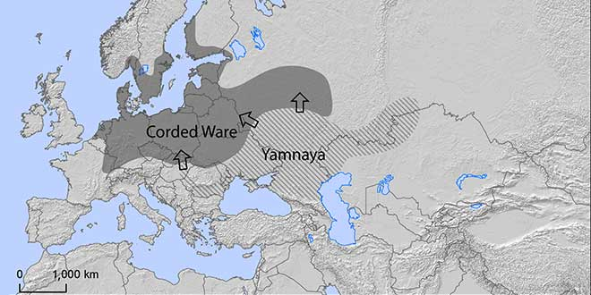 Yamnaya