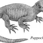 Pappochelys rosinae – bunicul țestoaselor