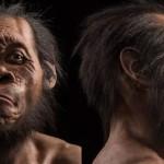 Homo naledi, o nouă specie a genului Homo?