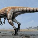 "Steroponychus ""Lightning Claw"" – cel mai mare dinozaur carnivor din Australia"