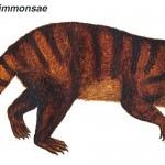 Kimbetopsalis simmonsae și mamiferele de după dinozauri