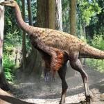 Ornithomimus – un dinozaur cu penaj de struț