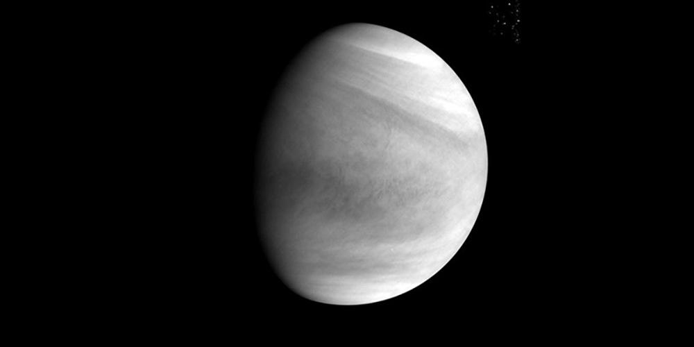 Venus Akatsuki