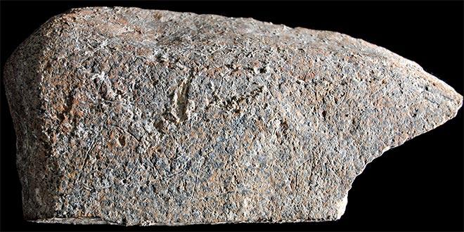 harta preistorica