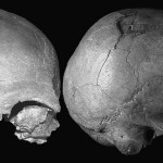 Cioclovina 1 – printre cei mai vechi europeni