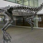 Gualicho shinyae – un T. rex din Patagonia