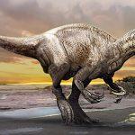 Murusraptor barrosaensis, un nou megaraptor din Patagonia