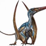 "Allkaruen koi – pterozaurul ""creier antic"" din Patagonia"