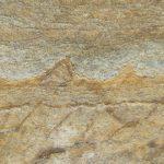 Cele mai vechi fosile descoperite în Groenlanda
