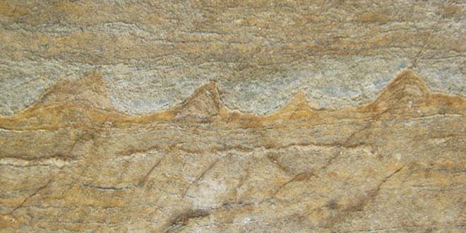 cele mai vechi fosile