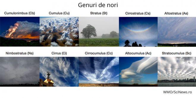 genuri de nori