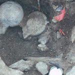 Situl Cerutti Mastodon ar putea rescrie istoria Americii