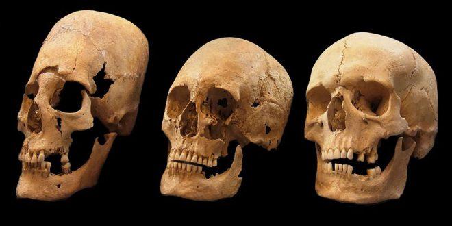 cranii alungite Bavaria