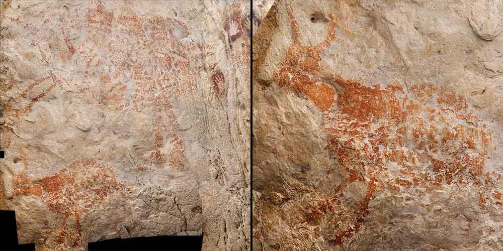 picturi rupestre Borneo
